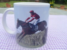 Grand National Winners Tiger Roll / Davy Russell Gordon Elliott Tribute mug 11oz