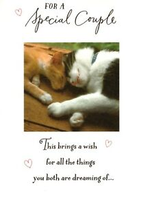 Happy Anniversary Special Couple Cuddling Cats Kittens Hallmark Greeting Card