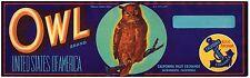 GRAPE CRATE LABEL ORIGINAL VINTAGE OWL BRAND LODI SACRAMENTO WISE BIRD 1930S