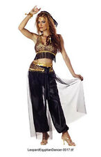 Adult Egyptian Dancer Arabian Sexy Costume Size L 10-12