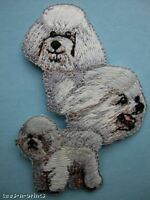 IRON-ON EMBROIDERED PATCH - BICHON FRISE - DOG