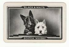 Vintage  Playing cards swap card B & W whisky dogs scotty westie drink advert