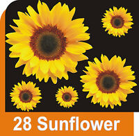 28 SUNFLOWER CAR STICKERS DECALS GRAPHICS WINDOW WALL DECORATIONS (1)