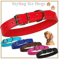 Hund Hundehalsband aus Pu Leder in vielen Lederfarben Breiten und Größen