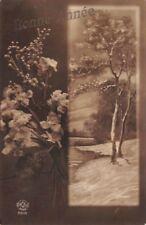 CPA. photo d'Art  - Bonne Année - paysage dans la neige et fleurs -