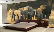 African Elephant Herd Wall Mural Photo Wallpaper POSTER PAPER GIANT WALL DECOR