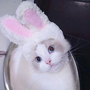 Pet Dog Cat Rabbit Ears Hat  Cap Happy Birthday Banner Pet Clothing  Kawaii US