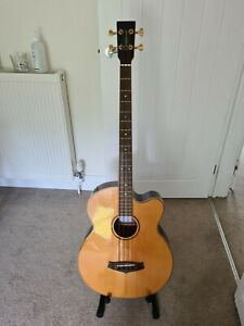 Tanglewood Electro Acoustic Bass Guitar with Stagg Guitar Case