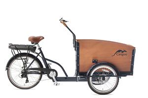 E-CARGOBIKE Elektrotransportrad E-Bike Cangoo ``Groovy`` BAKFIETS 6 Gang petrol