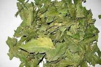 A Organic Neem Dried Leaf 100% Pure & Natural,Premium Quality Ceylon srilanka