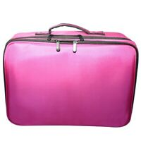 Professional Large Cosmetic Case Makeup Bag Storage Handle Organizer Travel Kit