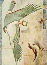 A4 photo Whymper Charles 1853 1941 égyptien Oiseaux 1909 Sparrow dans le temple de