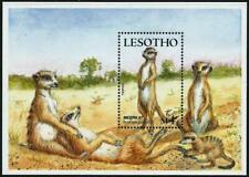 LESOTHO - 1988  'SMALL MAMMALS - Meerkats' Miniature Sheet MNH SG828MS [A3653]