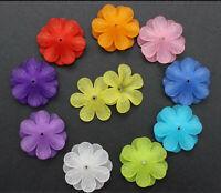 Acryl  Blüten Blumen gefrostet Farb Mix 33mm x 8mm Perlen Schmuck basteln DIY