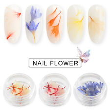 10pcs Real Dry Dried Flower for 3D UV Gel Acrylic False Tips Nail Art Salon