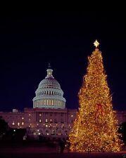 Christmas Tree at the US Capitol building Washington DC 2003 - New 8x10 Photo