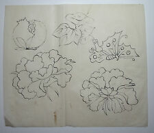 PEONY, BUTTERFLY & FRUIT. : Original Japanese Painting for Woodcut HANSHITA-E