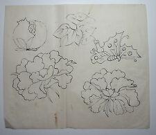 PEONY, BUTTERFLY & FRUIT. : Original Japanese Painting for Woodcut HANSHITA-E