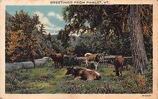 PAWLET VERMONT GRAZING CATTLE GREETINGS POSTCARD 1938 PMK