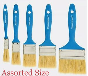 20 Assorted Size Disposable Paint Brush Painting Brushes Decorating 12,25,40,50m