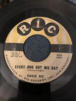 EDDIE BO Every Dog Got His Day RIC SOUL, R&B, NORTHERN ORIGINAL VINYL 45
