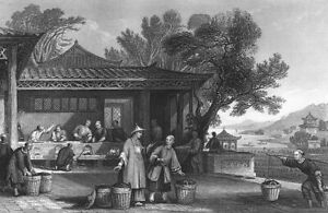 Ancient China, WORKERS MAKE GREEN TEA FROM PLANT LEAF ~ 1842 Art Print Engraving