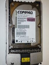 HP Compaq SCSI Ultra 3 36,4 GB 10000 10K BD0366459B CA05904-B20100DC B010 JW