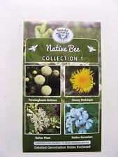 Native Bee Collection