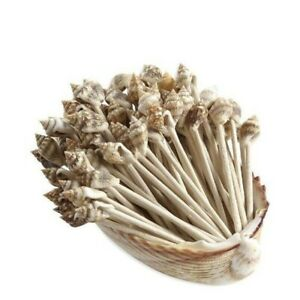 Sea Shell Wedding and Party Decor Toothpicks (Pack of 100)