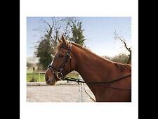 Halsverlängerer Gummichambon Chambon Einheitsgröße vestellbar Pony Warmblut NEU