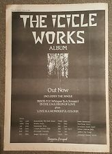Icicle Works Album Tour 1984 press advert Full page 30 x 42 cm mini poster