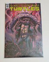 Teenage Mutant Ninja Turtles #88 Kevin Eastman Variant IDW