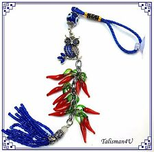 Lucky Blue EVIL EYE Owl for Car Home Hanging Protection Amulet Red Pepper Charm
