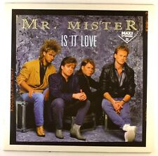 """12"""" MAXI-MR MISTER-IS IT LOVE-e380-cleaned"""