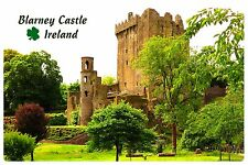 Fridge magnet vinyl Blarney Castle Ireland Irish gift educational