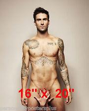 "Maroon 5~Adam Levine~Poster~Music~Photo~16"" x  20"""
