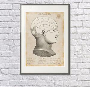 The Everton Fan:  Everton Poster, Gift, Print, EFC Fan