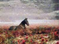 NATURE PAINTING LANDSCAPE HORSE POSTER ART PRINT HOME PICTURE BB139B