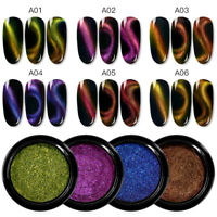 Holographic Magnetic Glitter Nail Art Powder Dust Pigment Cat Eye Effect Decors