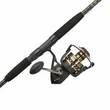 Penn Btlii8000102H Battle Ii Ht100 Saltwater Spinning Fishing Reel and Rod Combo