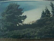 postcard unused 1989 dargaville kai iwi lakes