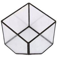 Terrario de vidrio de Cubo Maceta de Invernadero de casa de jardin de hadas R5P4