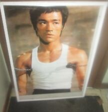 BRUCE LEE POSTER NEW 1996 RARE VINTAGE COLLECTIBLE OOP ORIGINAL  BRANDON LEE