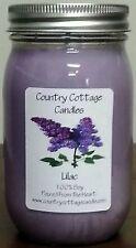 Violet Lime ~ 16 oz Soy Candle ღ DreeM Gardens ღ