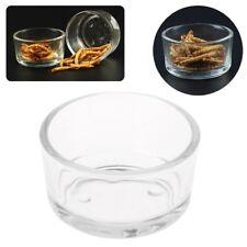 New Reptile Feeder Water Food Glass Bowl Cup Lizard Turtle Cricket Basin Feeding
