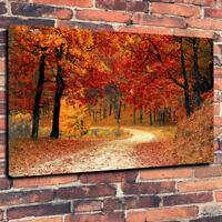 """Autumn Leaves, Printed Box Canvas Picture A1.30""""x20"""" 30mm Deep Frame Wall Art"""