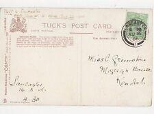 Miss C Grimstone Mozergh House Kendal 1906 335a