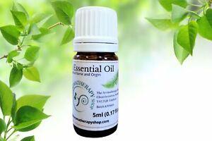 Pure Agarwood Essential Oil 5ml (0.17 fl ozs)
