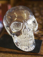 SKULL Head Figure Ornament PAGAN OCCULT HORROR Resin CLEAR Skeleton GOTHIC
