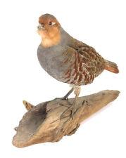 Hungarian Partridge Bird Taxidermy Wall Mounted Animal Statue